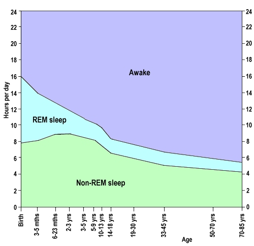 Changing proportion of REM sleep, non-REM sleep and wakefulness throughout life (image by Luke Mastin)